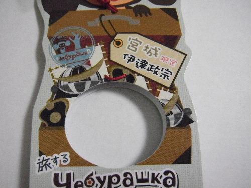 2009_01130004.JPG