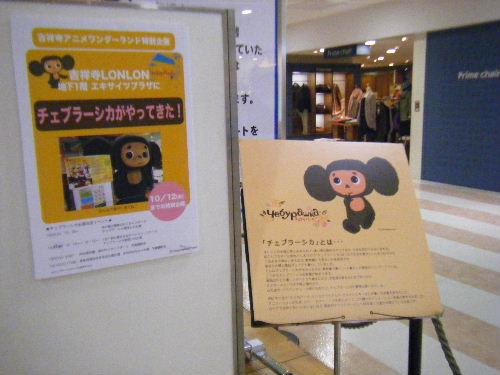 2009_10050086.JPG