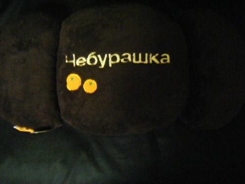2009_121850013.JPG